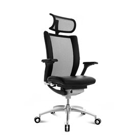 Wagner Titan Limited premium chair