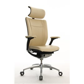 Wagner Titan Limited S premium chair